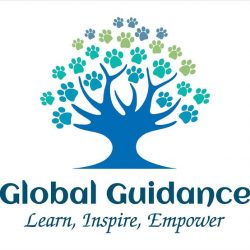 Global Guidance